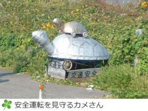 松山下公園前のカメ