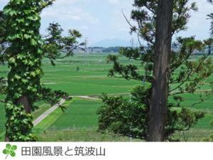 松山下公園から筑波山