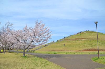 牧の阿公園のひょうたん山