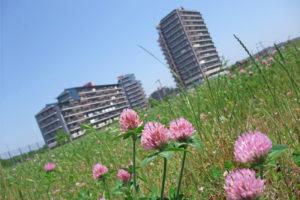 印旛日医大エリアの風景