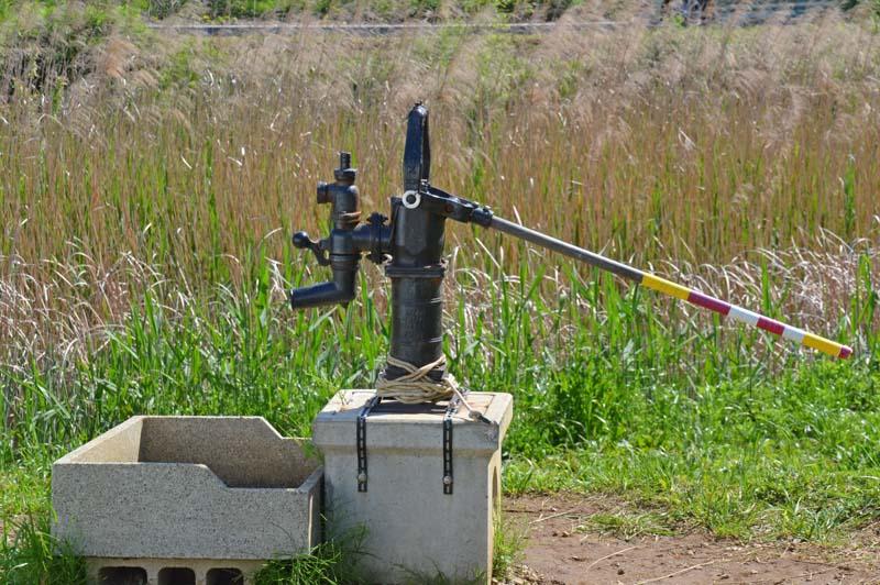 木下のむじな池の井戸