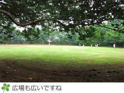 印旛沼公園は広場も広い