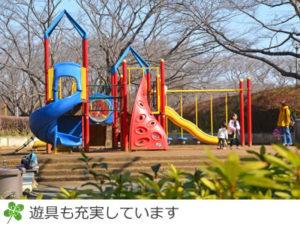 印旛沼公園の遊具