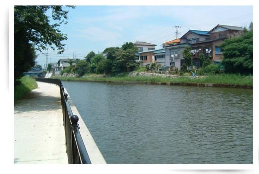 六軒川の遊歩道
