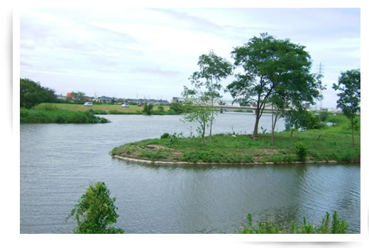手賀川の風景