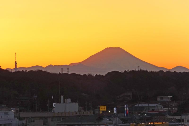 木下万葉公園から富士山とスカイツリー