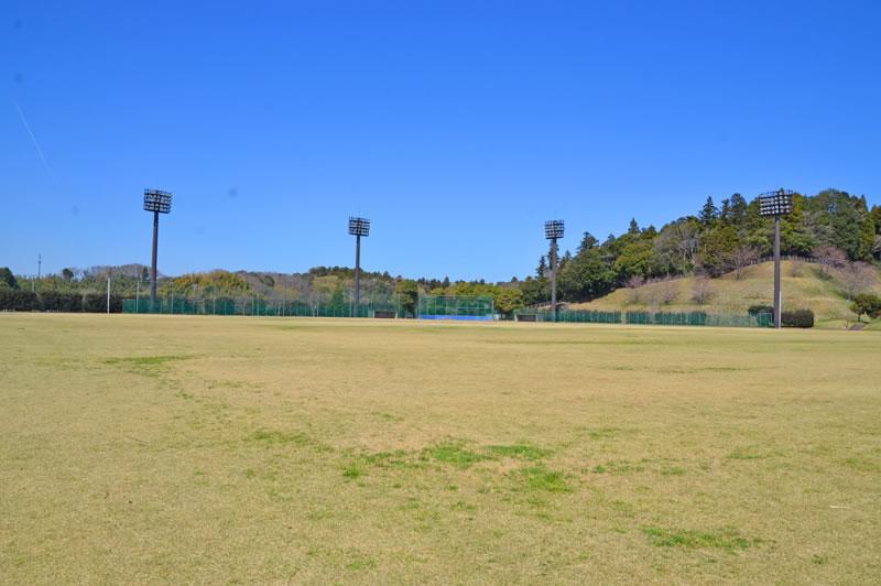 印旛西部公園の芝生