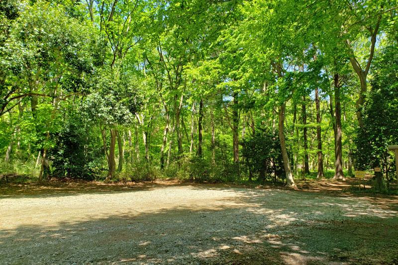 草深の森の駐車場