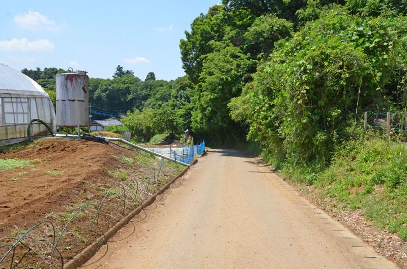 結縁寺付近の農道