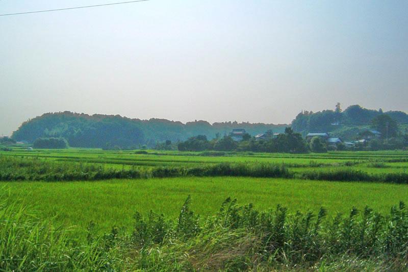 にほんの里100選にも選ばれた結縁寺近くの里山の風景