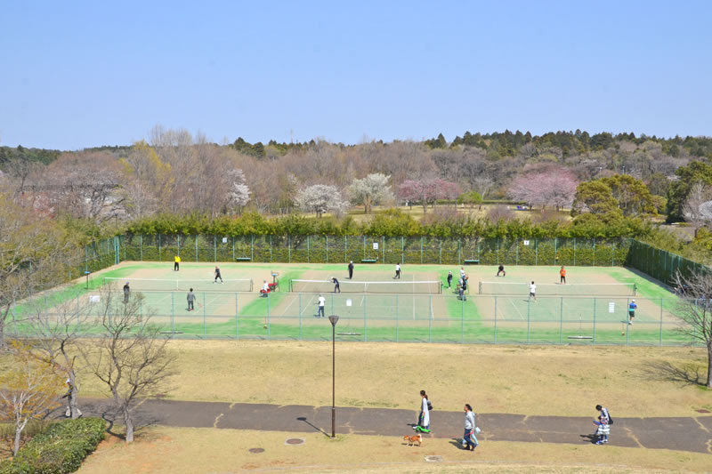 牧の原公園のテニスコート