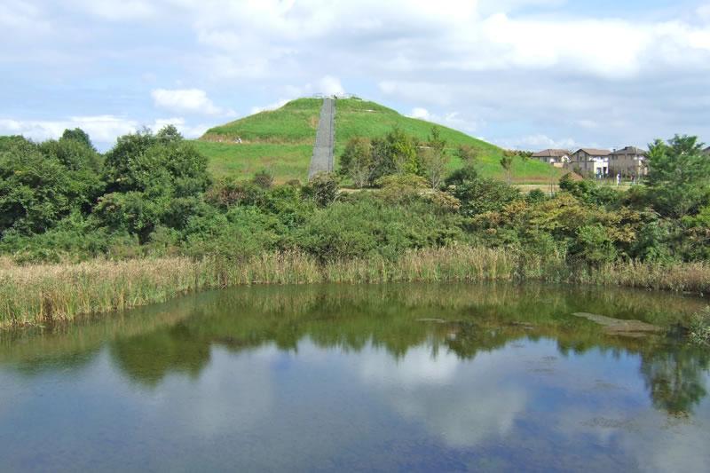 牧の原公園の調整池